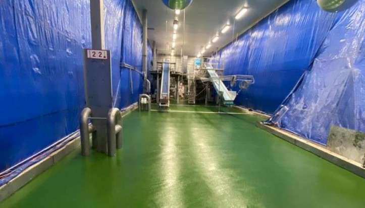 Antislip vloer groenteverwerking