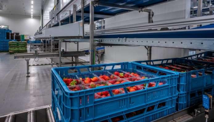 Ucrete MF zuurbestendige vloer voor BerryWorld