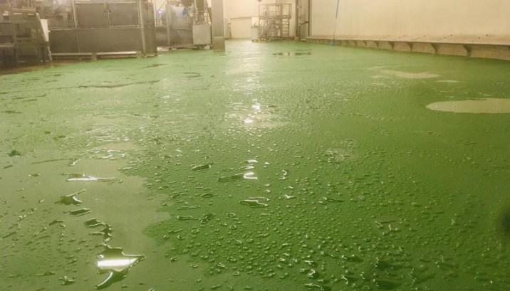 Resultaat na vloerrenovatie een groene Ucrete vloer