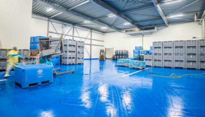 Vloerrenovatie in slachterij met HACCP vloer